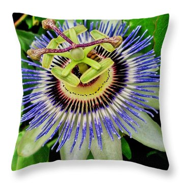 Passion Flower Bee Delight Throw Pillow