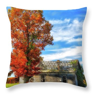 Past Its Prime Vintage Autumn Barn Ap Throw Pillow