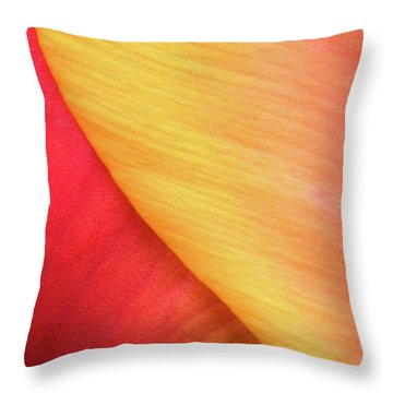Throw Pillow featuring the photograph Pastel Curve  by Michael Hubley