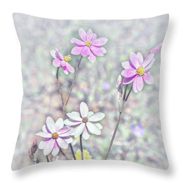 Throw Pillow featuring the photograph Pastel Paper Daisies by Elaine Teague