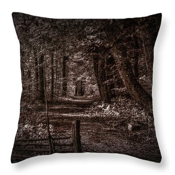 Path In Forest #i0 Throw Pillow