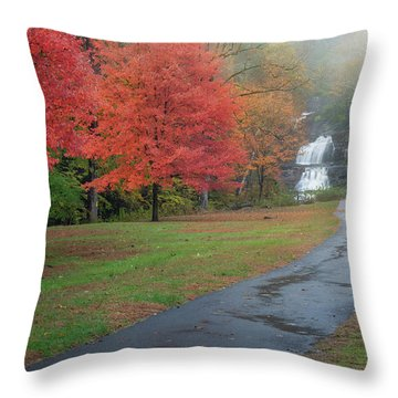 Throw Pillow featuring the photograph Path To The Falls by Bill Wakeley