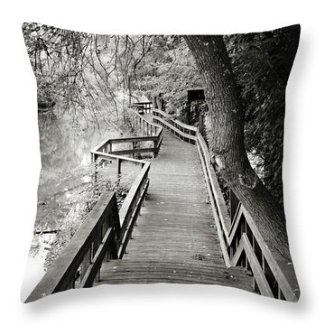 Throw Pillow featuring the photograph Pathway by Michelle Wermuth