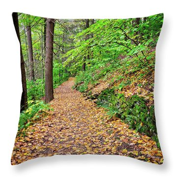 Throw Pillow featuring the photograph Peaceful Autumn Trail At Watkins Glen State Park by Lynn Bauer