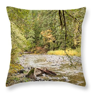 Throw Pillow featuring the photograph Peaceful Molalla River by Brian Eberly