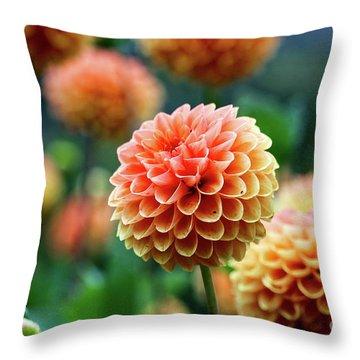 Peach Dahlias Throw Pillow