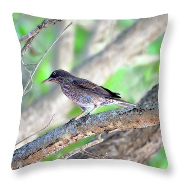 Pearly Eyes Throw Pillow