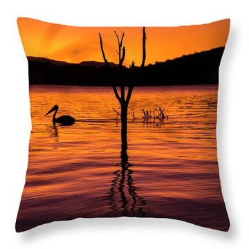Throw Pillow featuring the photograph Pelican by Rob D Imagery
