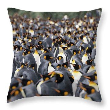 Penguinscape Throw Pillow