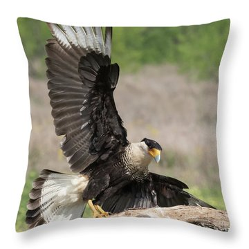 Perfect Landing Throw Pillow