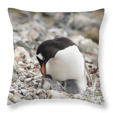 Personality Emerges Early Throw Pillow