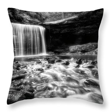 Throw Pillow featuring the photograph Perspective by Russell Pugh