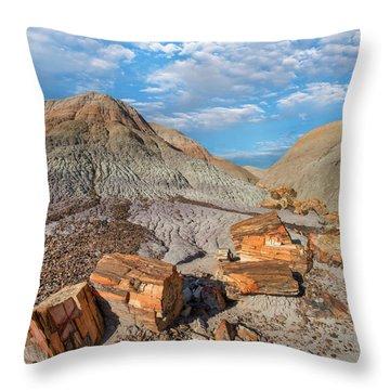 Petrified Logs, Blue Mesa, Petrified Throw Pillow