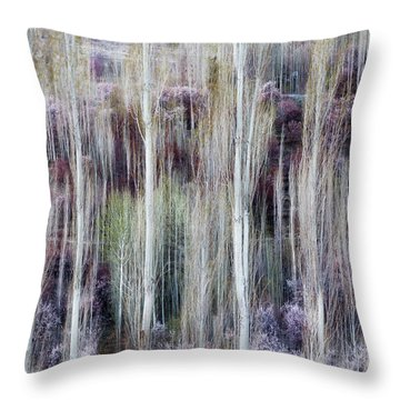 Phases Of Spring  Throw Pillow