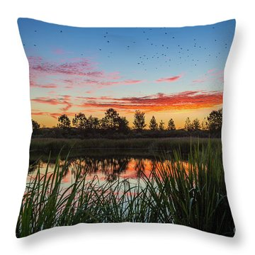 Phinizy Swamp Sunrise - Augusta Ga Throw Pillow