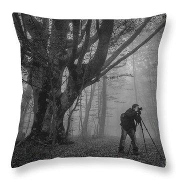 Single Tree Throw Pillows