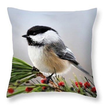 Throw Pillow featuring the mixed media Pine Chickadee by Christina Rollo