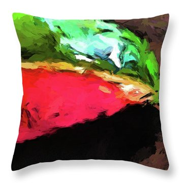 Pink And Green Watermelon Throw Pillow