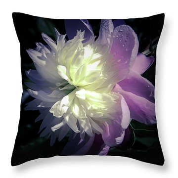 Pink And White Peony Petals And Drops  Throw Pillow