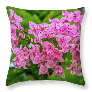 Pink Bougainvillea Flowers Throw Pillow