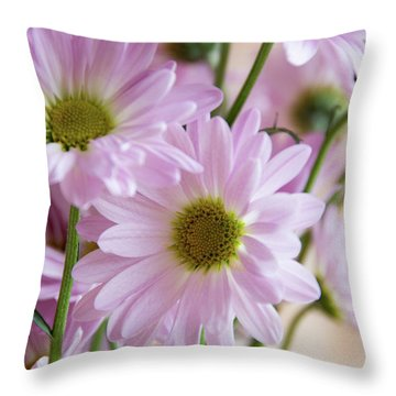 Pink Daisies-1 Throw Pillow