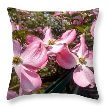 Pink Dogwood Blooms Throw Pillow
