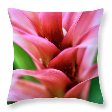 Pink Flower Layers At The Desert Botanical Garden Throw Pillow