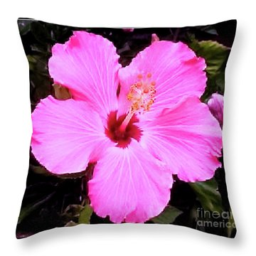 Throw Pillow featuring the photograph Pink Hibiscus by James Fannin