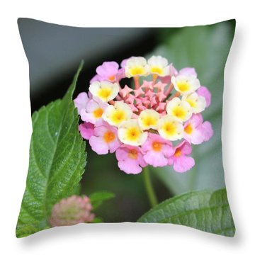 Pink Lantana Throw Pillow