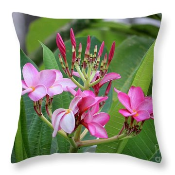 Pink Plumeria With Leaves Throw Pillow