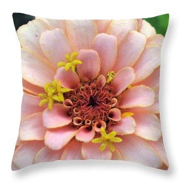 Pink Posy  Throw Pillow