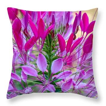 Pink Queen Flower Throw Pillow