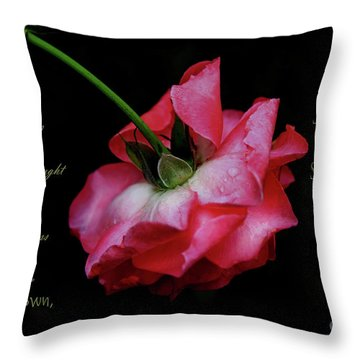 Pink Rose Takes A Bow - Verse Throw Pillow