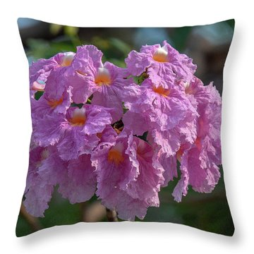 Throw Pillow featuring the photograph Pink Trumpet Tree, Rosy Trumpet Tree Or Pink Poui Dthn0257 by Gerry Gantt
