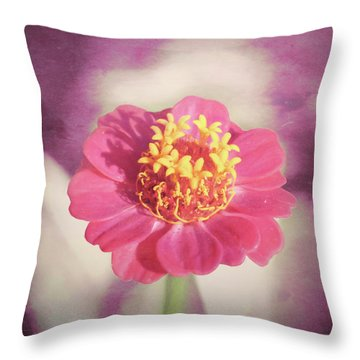 Pink Zinnia Isolated Throw Pillow