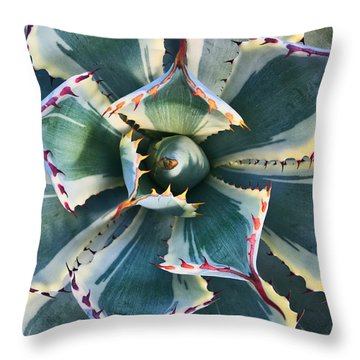 Pinwheel Succulent Throw Pillow