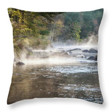 Pipeline Pool  Throw Pillow