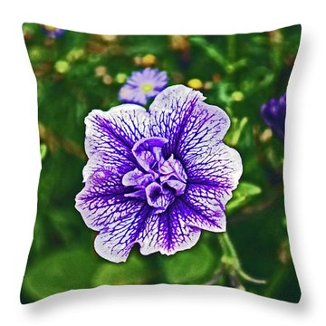Pitlochry.  Purple Petunia. Throw Pillow