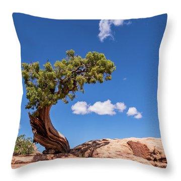 Playful Juniper Throw Pillow