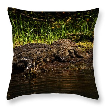 Playing In The Mud Throw Pillow
