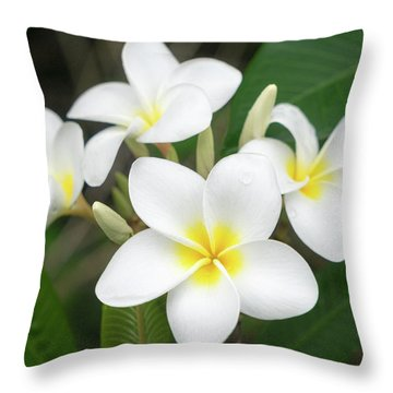 Pleasing Plumeria Throw Pillow