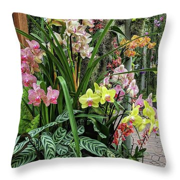 Plentiful Orchids Throw Pillow
