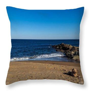 Plum Island Scene Throw Pillow