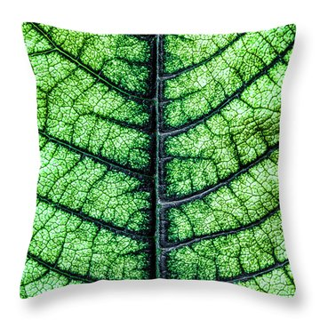Poinsetta Leaf In Abstract Macro Throw Pillow