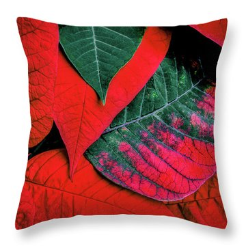Poinsettia Caught In The Act Throw Pillow