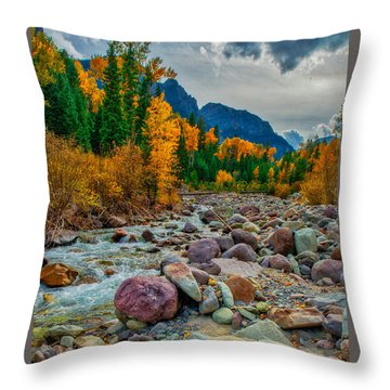 Point Of Color Throw Pillow