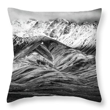 Polychrome Mountain, Denali National Park, Alaska, Bw Throw Pillow