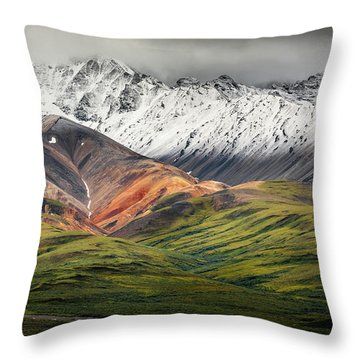 Polychrome Mountain, Denali Np, Alaska Throw Pillow