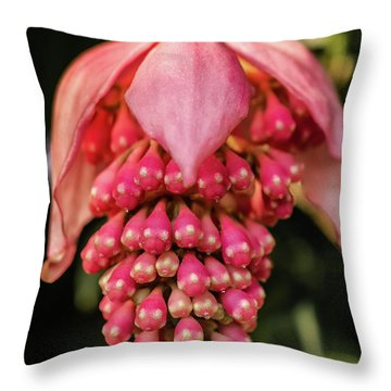 Pomegranate Flower Throw Pillow