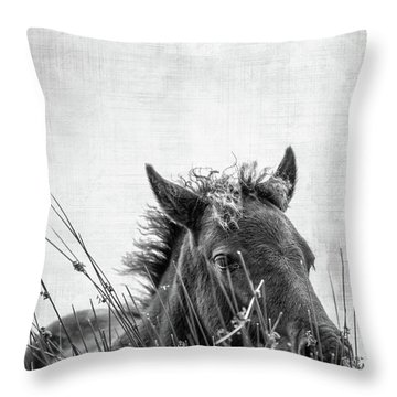 Pony Foal Throw Pillow